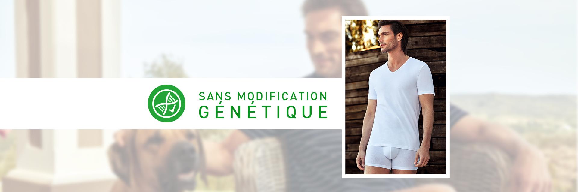 Collection de sous-vêtements à base de fibres organiques | Sous-vêtements Impetus_2