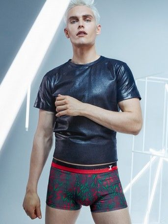 Boxer I AM Passionate