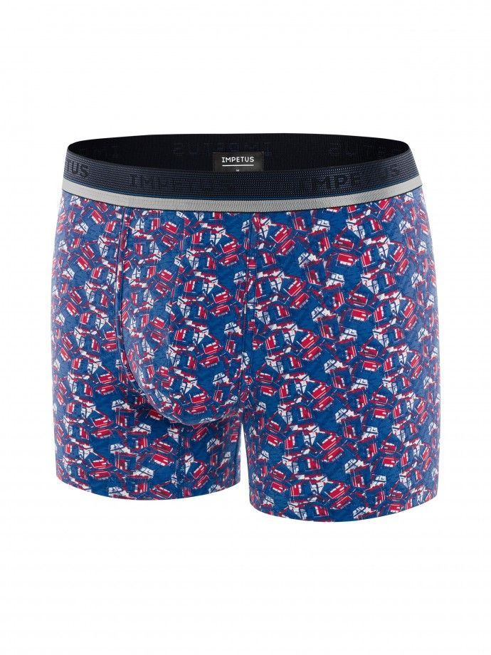 Boxer Graphic Print - H01