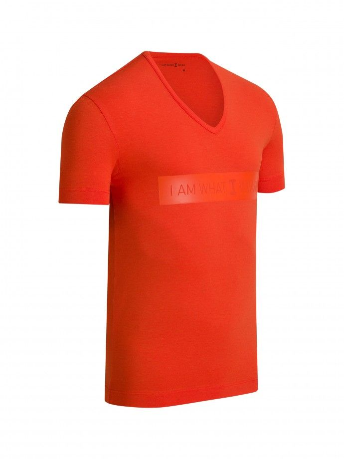 V-neck T-shirt Genuine